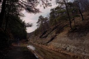 Canal cut