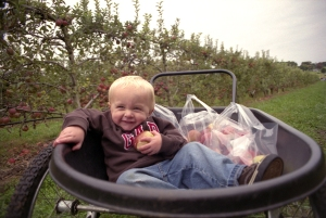 102209_AppleOrchard4