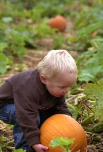 102209_Pumpkin